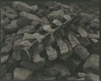 八木清作品展「Silat Naalagaq〜世界に耳を澄ます」