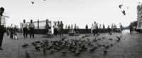 M.HASUI写真展「Bonheur」