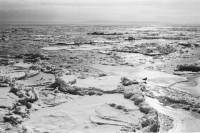 中藤毅彦写真展「ICE and SNOW」
