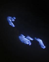 瀧本幹也写真展「FLAME / SURFACE」