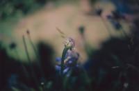 瀧本幹也 写真展「AFTERIMAGE 」
